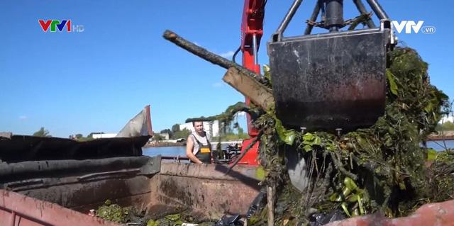 Nga: Đội tàu đặc nhiệm săn rác trên sông Matxcơva