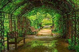 Thiên đường tươi xanh ngay giữa thủ đô Moscow
