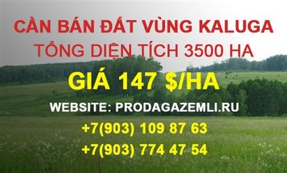 Bán đất nông nghiệp diện tích 3500 ha tại Kaluga