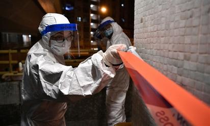 Chuyên gia cảnh báo '60% dân số thế giới nhiễm virus corona'